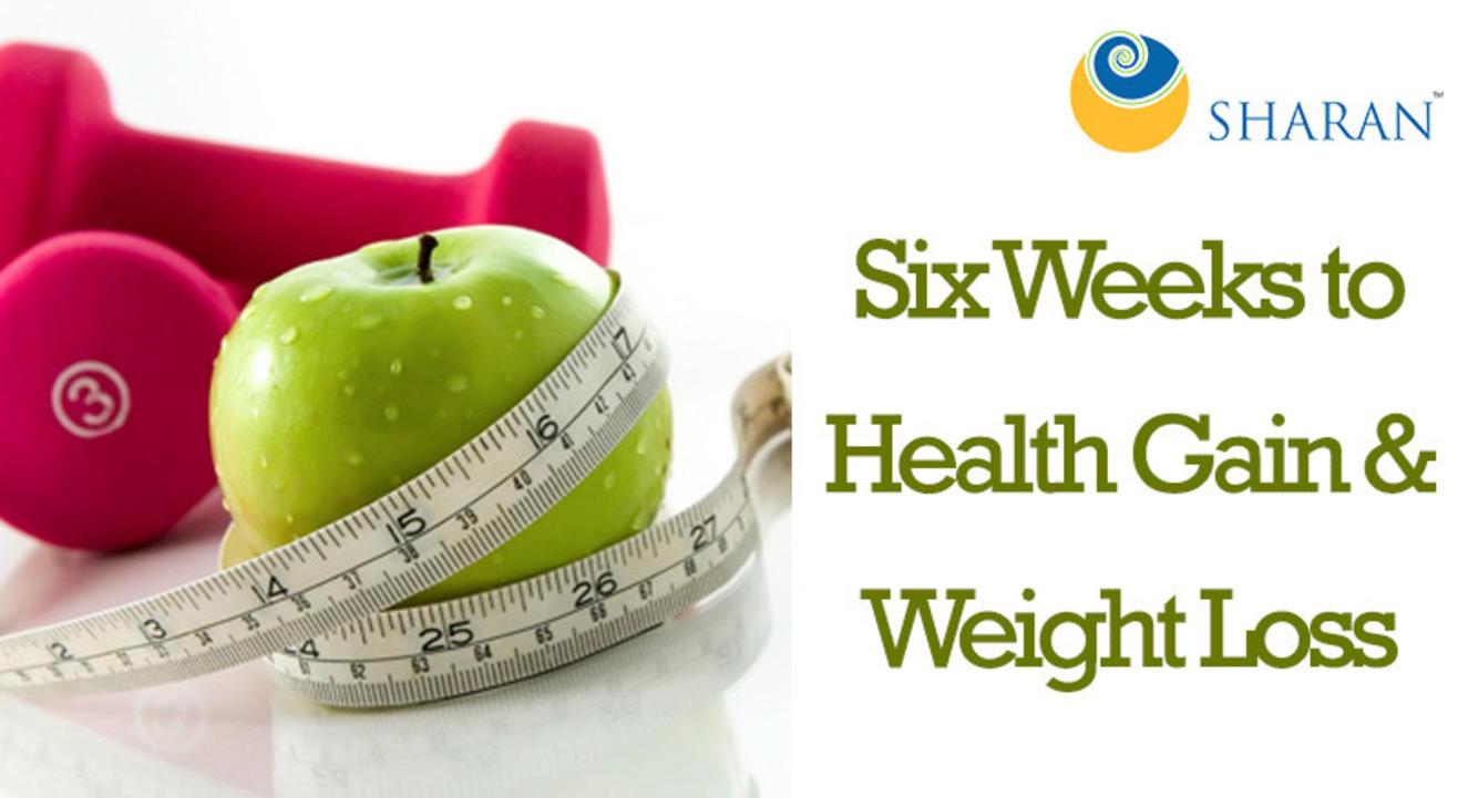 Six Weeks to Health Gain & Weight Loss