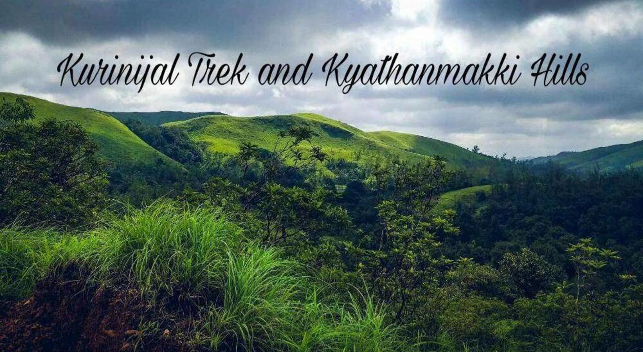 The Mesmerizing Kyatanmakki Hills & Kurinjal Trek | Namma Trip