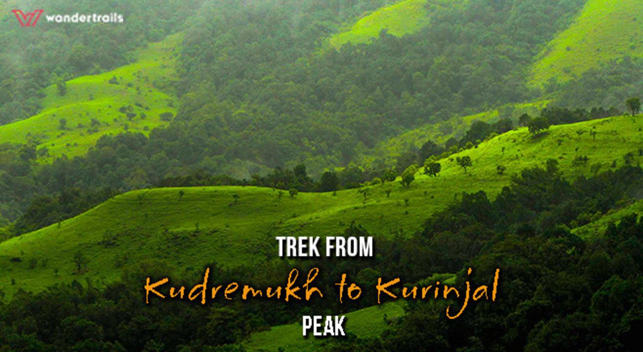 Trek through lush greenery of Kudremukh to Kurinjal Peak