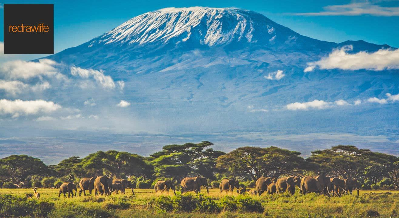book tickets to kilimanjaro to the roof of africa first