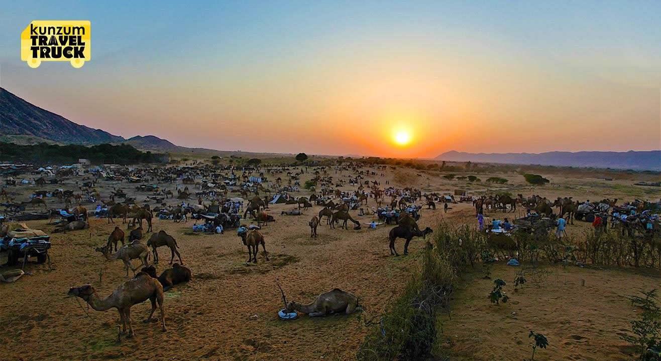 Let's Celebrate The Pushkar Camel Fair