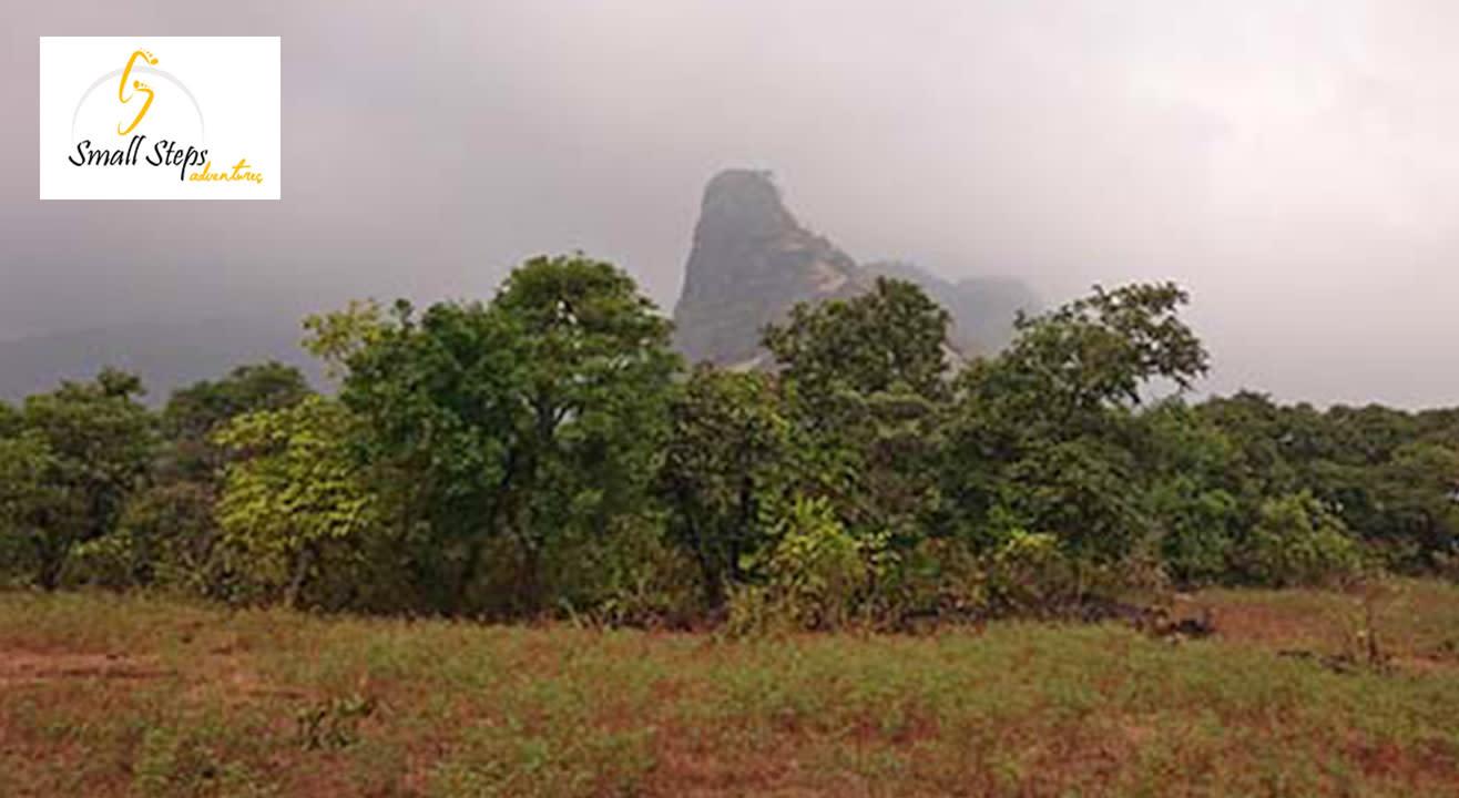 One Day Trek To Tandulwadi
