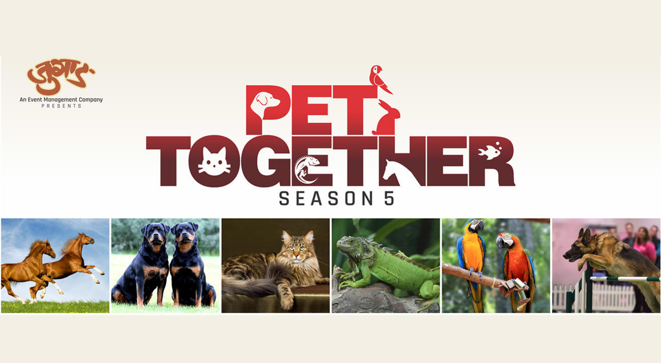 Pet Together Season 5