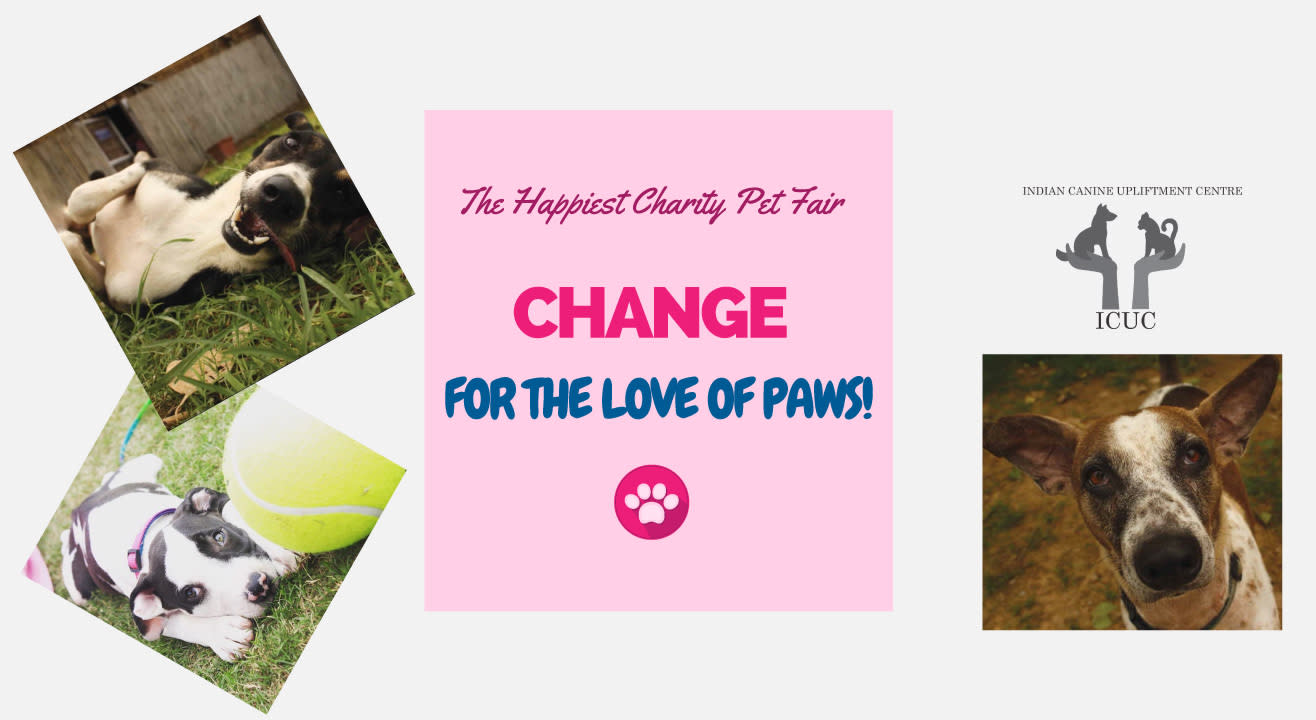 Change! For The Love Of Paws