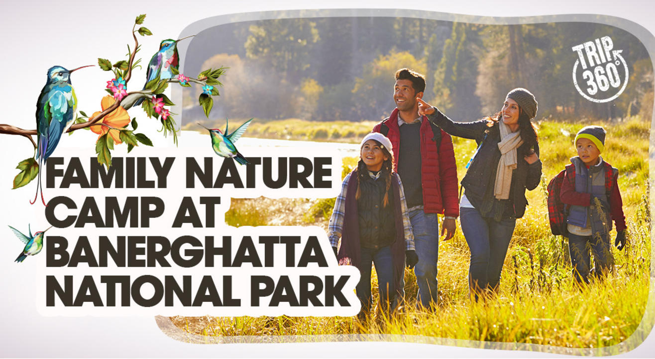 Family Nature Camp at Bannerghatta National Park