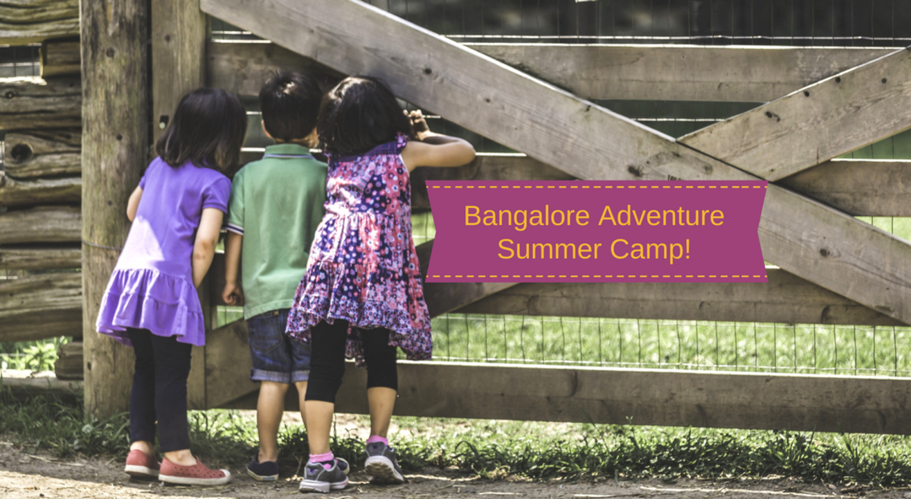 Bangalore Adventure Summer Camp | Plan The Unplanned