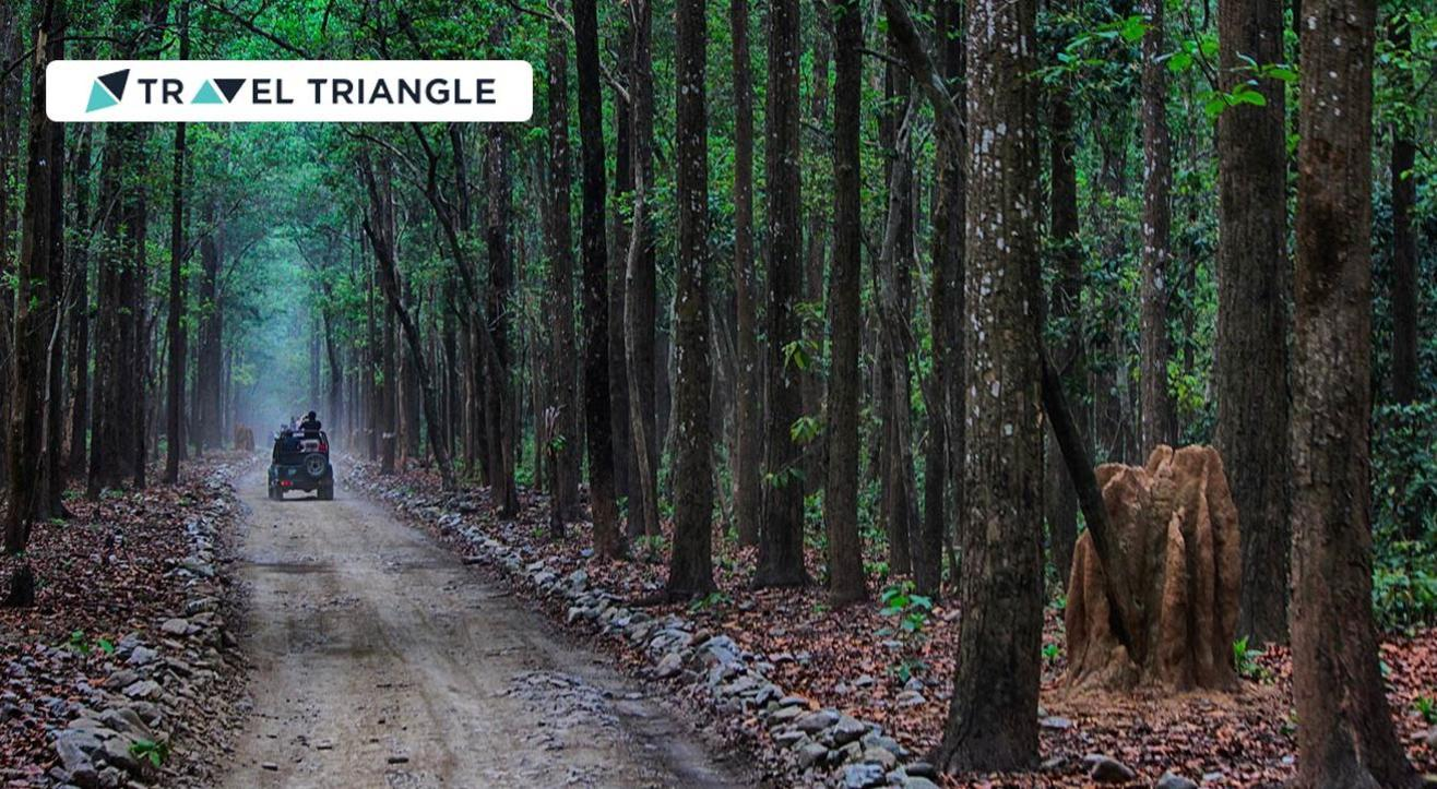 Visit Jim Corbett with Travel Triangle