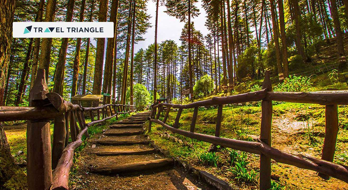 Visit Dhanaulti with Travel Triangle