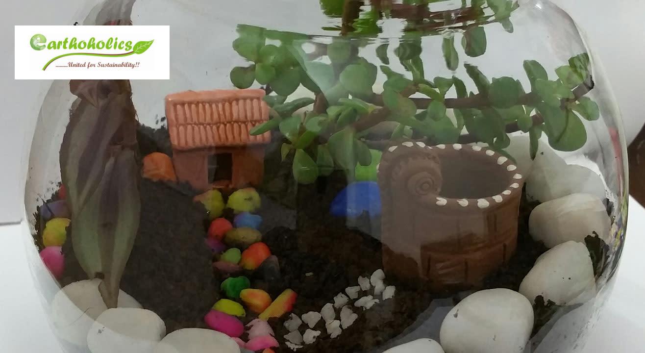 Terrarium And Dish Garden Workshop