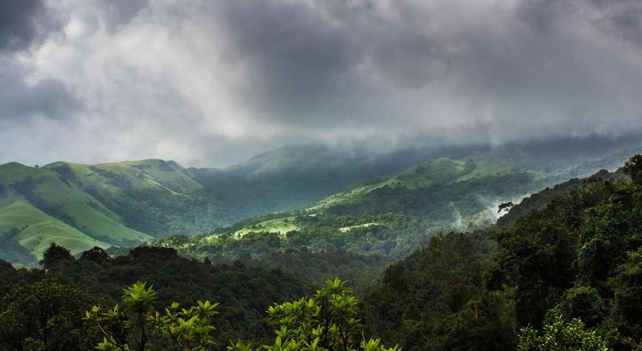 Kurinjal Peak Trek | Plan The Unplanned