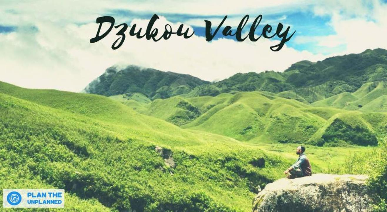 Dzukou Valley Trek In Nagaland | Plan The Unplanned