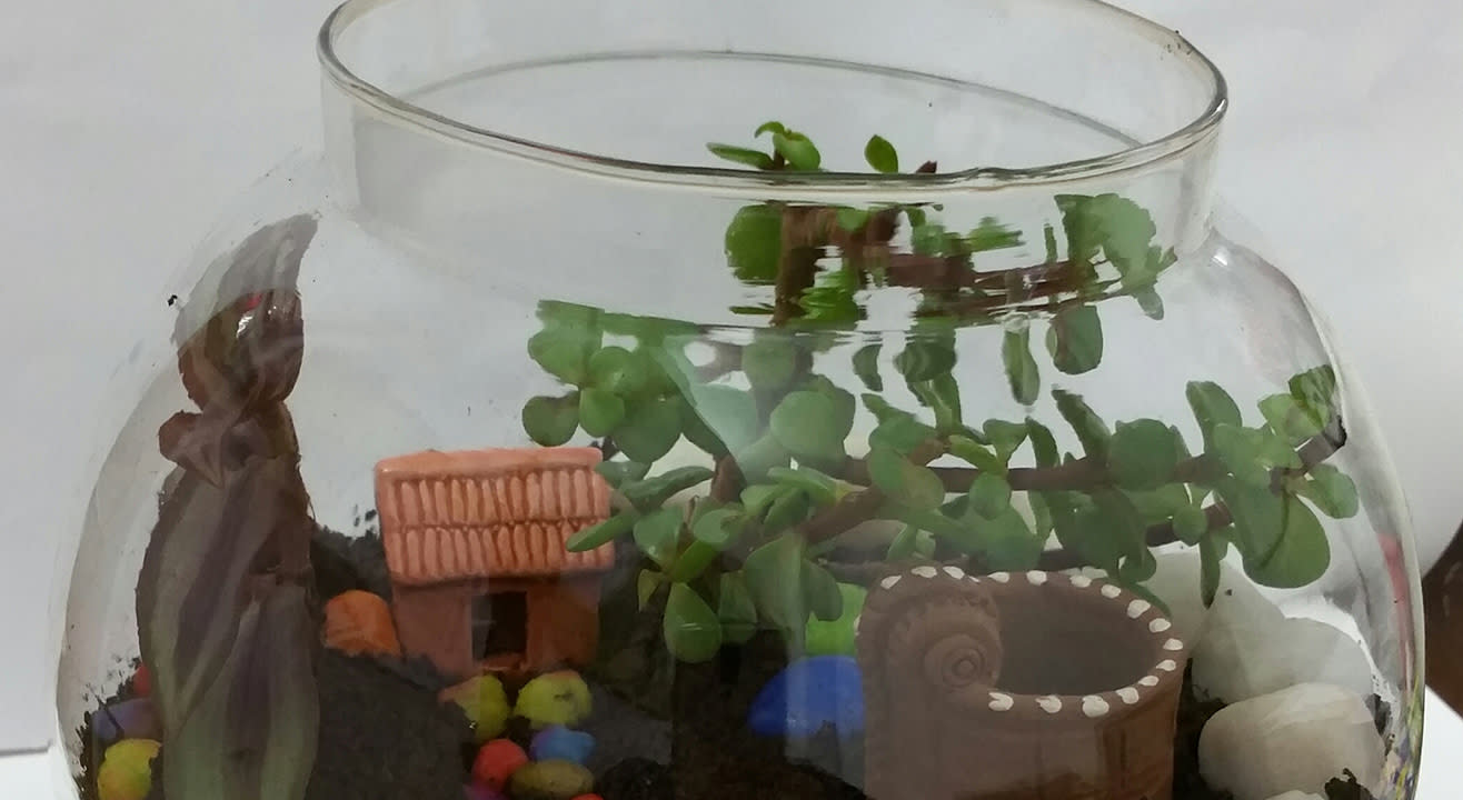 Terrarium and Dish Gardening Workshop