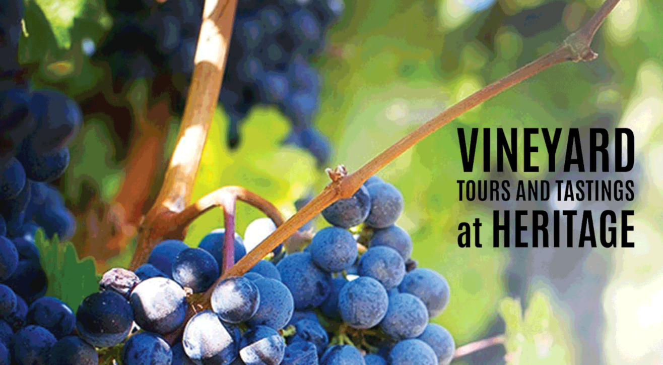 Heritage winery Tour and Tasting
