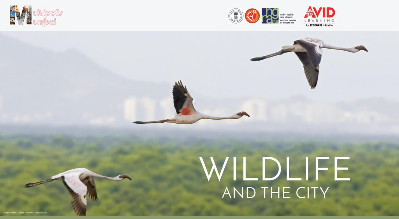 Multipolis Mumbai: Wildlife and the City