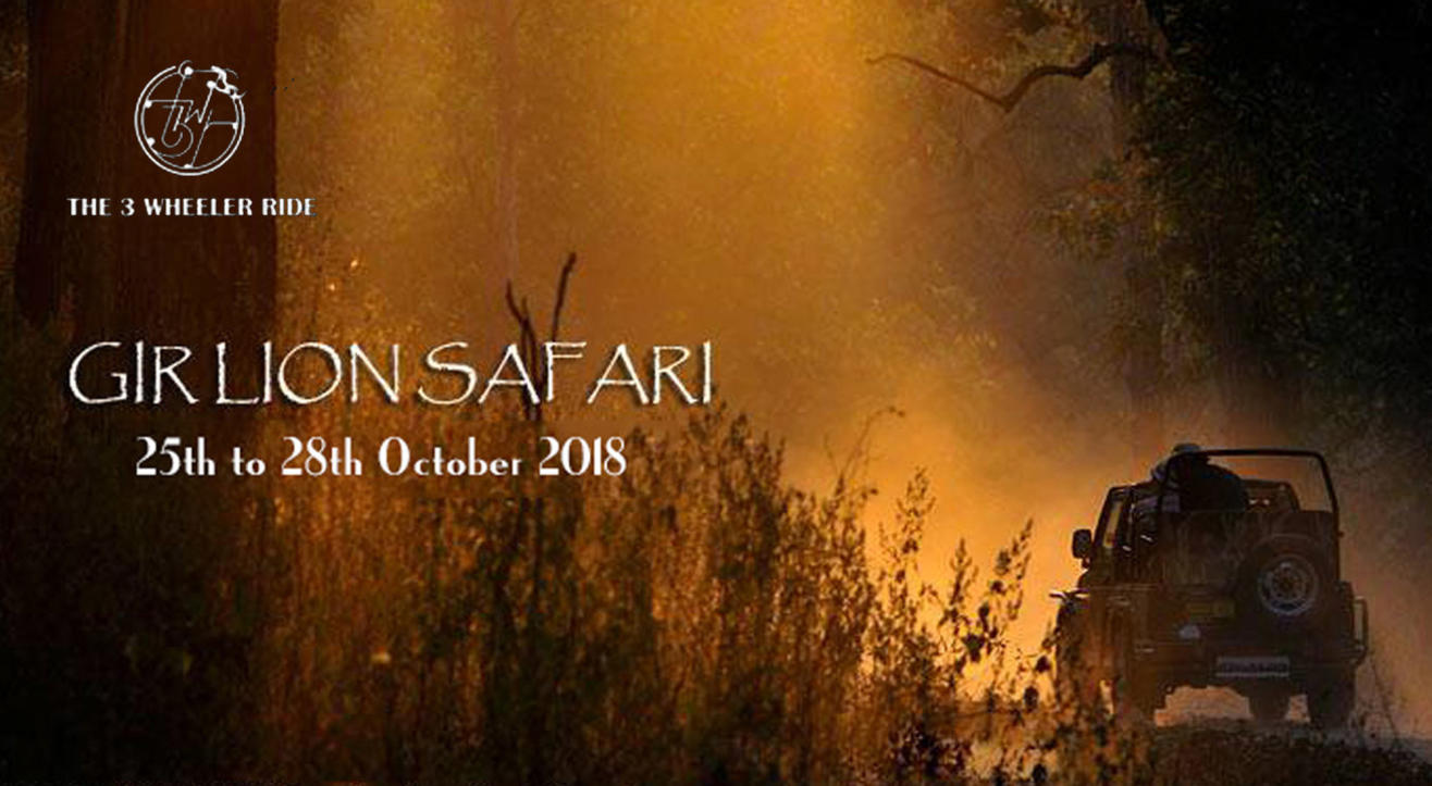 Gir Lion Safari 2018