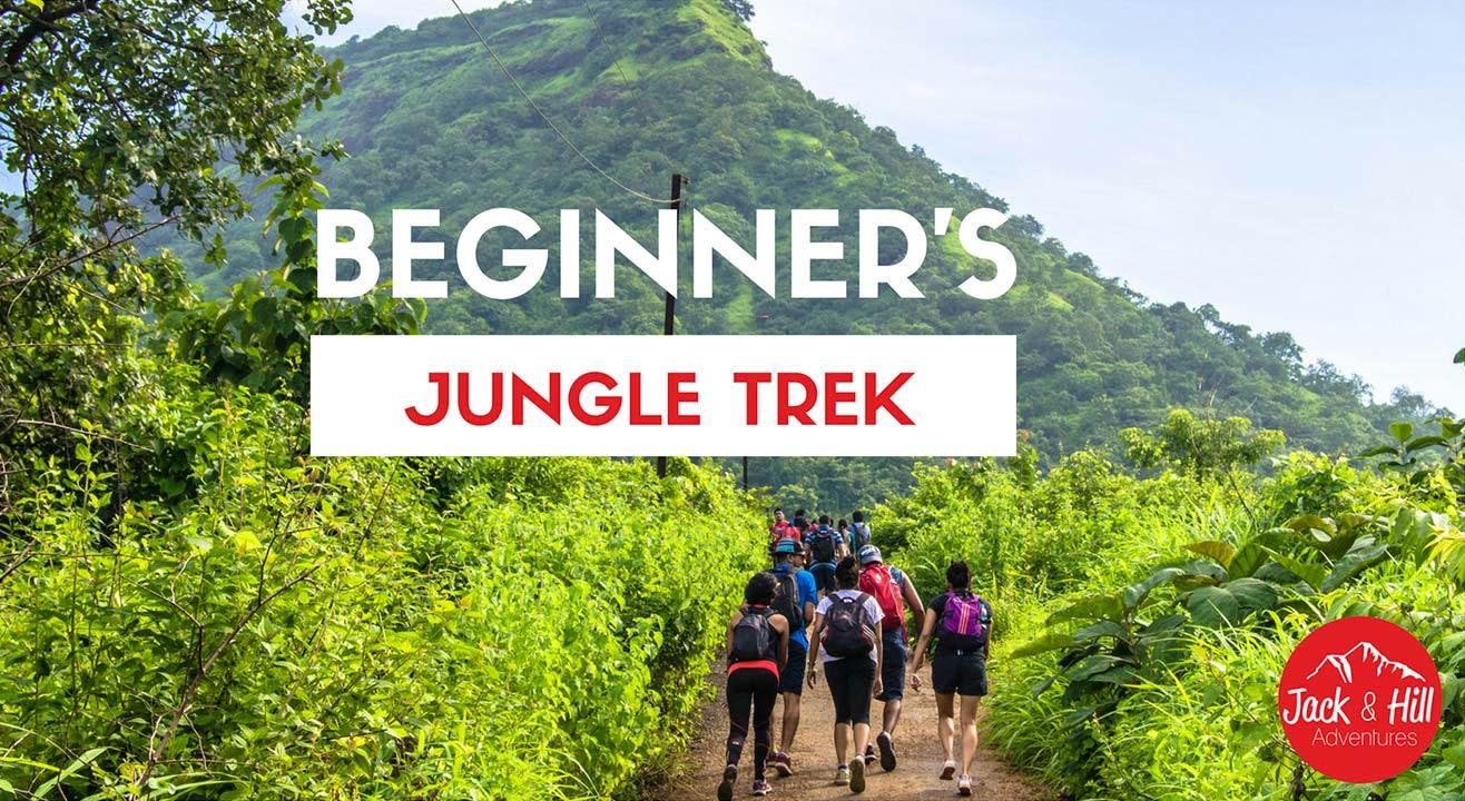 Beginner's Jungle Trek