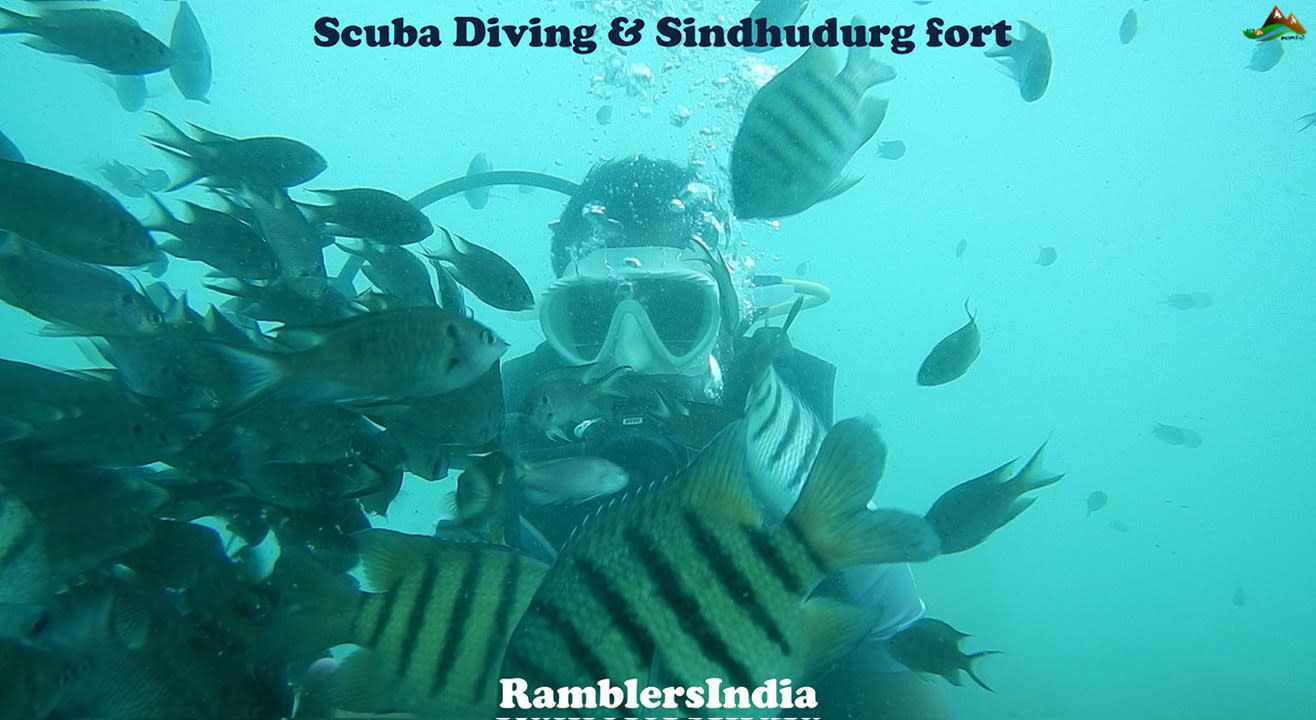 Scuba diving with Sindhudurg fort tour