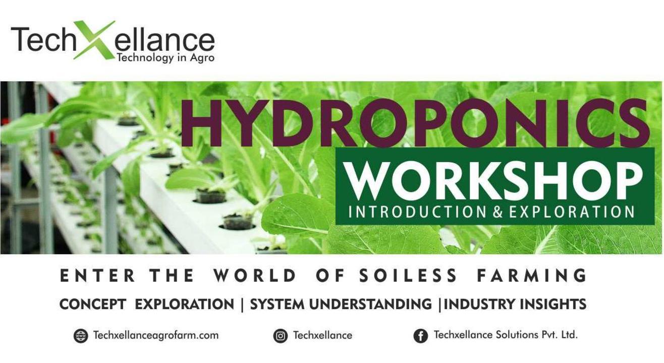 One Day Hydroponics Training Workshop