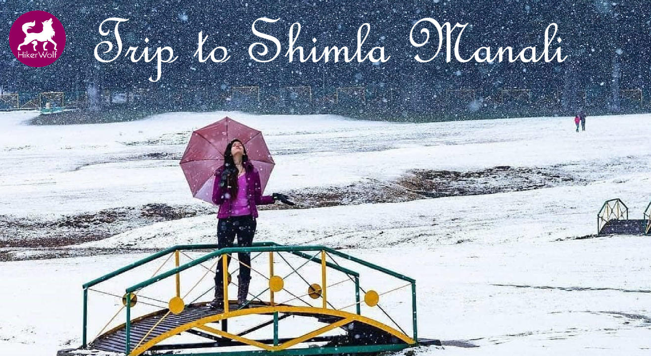 HikerWolf - Trip to Shimla Manali