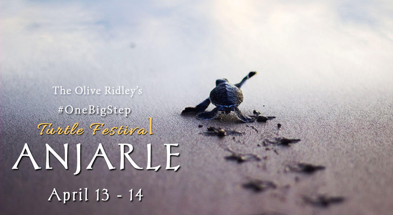 One Big Step - Olive Ridley's Turtle Festival at Anjarle