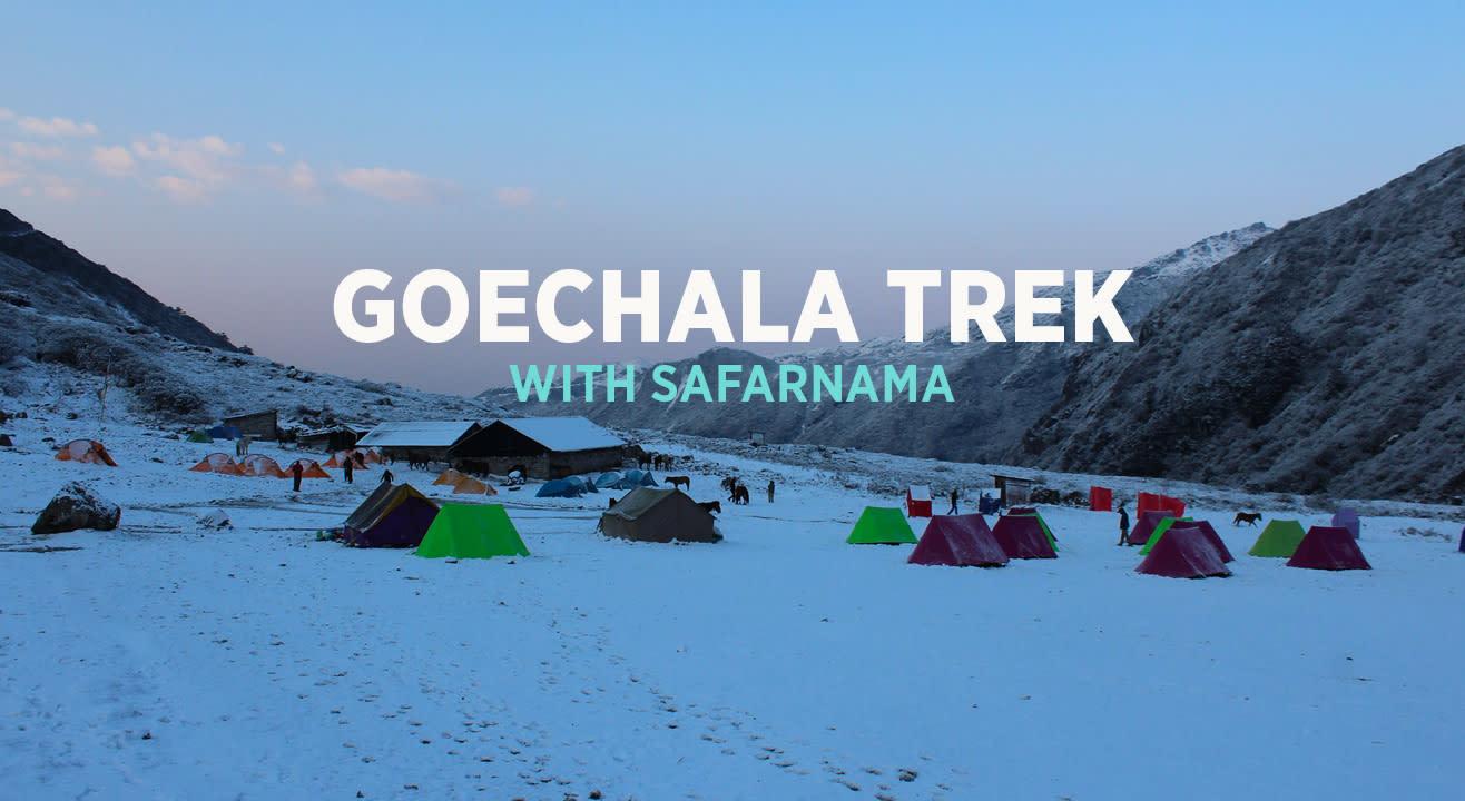 Goechala Trek With Safarnama