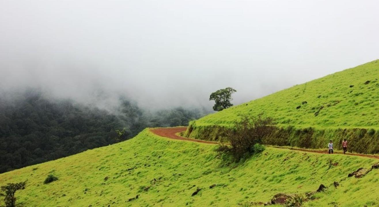Kodachadri Trek And Nagara Fort Visit | My Hikes