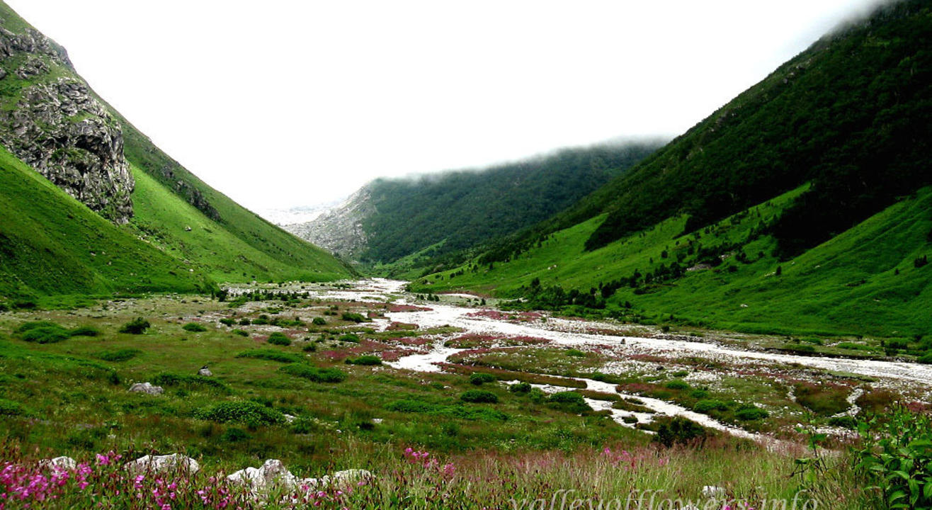 Valley of Flowers 2019 National Himalayan Trekking Cum Training Expedition