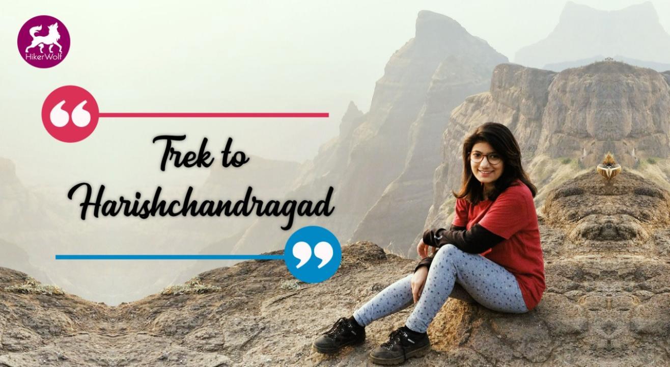 HikerWolf -Trek to Harishchandragad