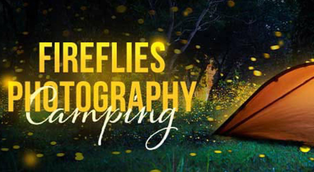 Fireflies Photography Camping |  Bhatakna The Journey Bhatkanti