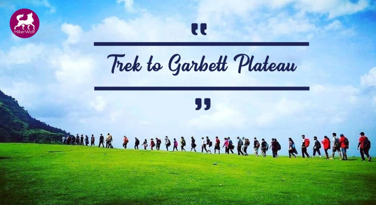 HikerWolf - Trek to Garbett Plateau & Bhivpuri Waterfall