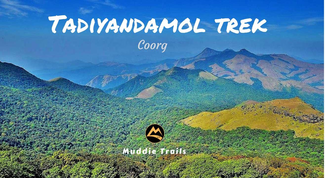 Coorg Monsoon Special Trek to Tadiyandamol Peak, Lake, Kushalnagar | Muddie Trails