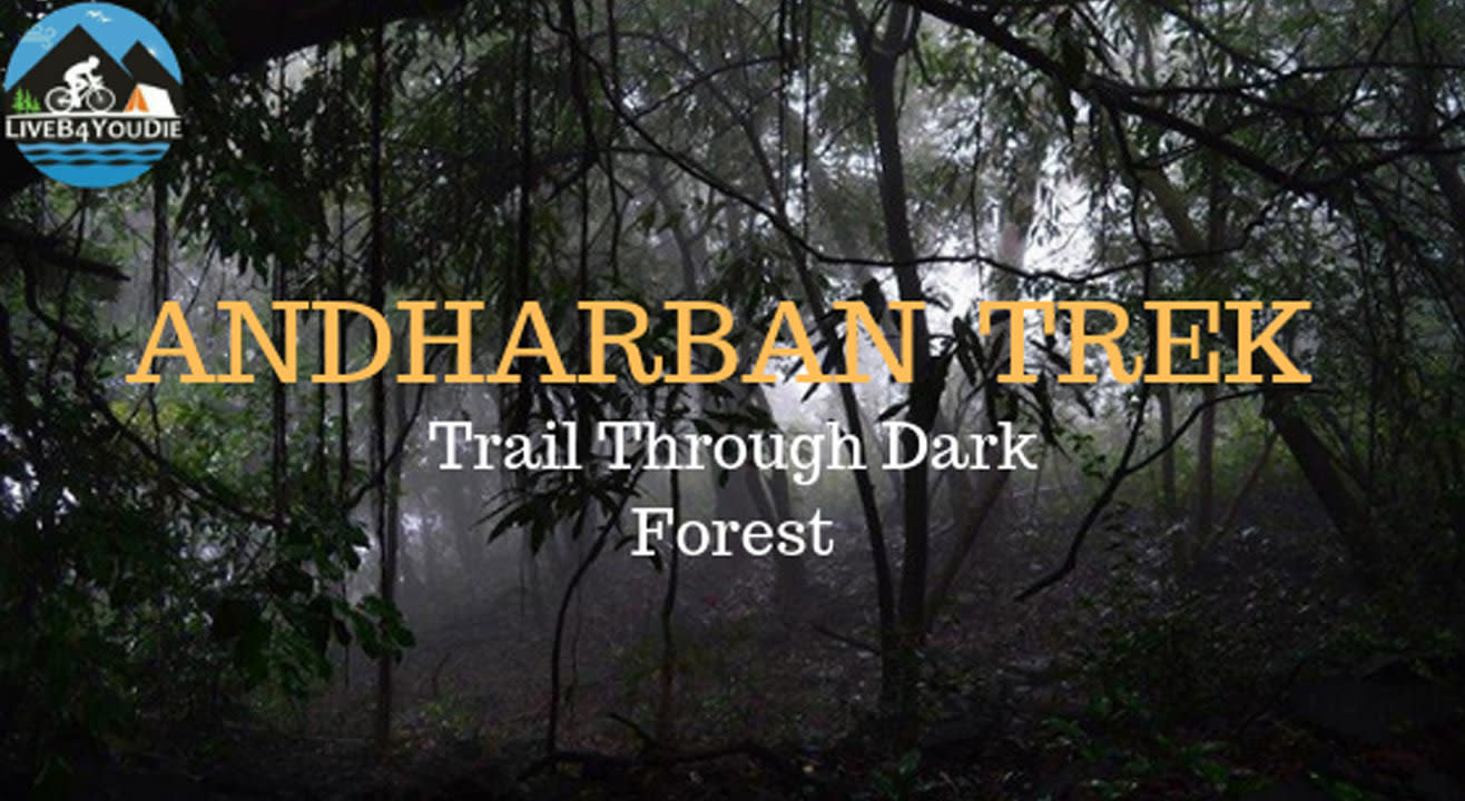 Monsoon Jungle Trail To Andharban