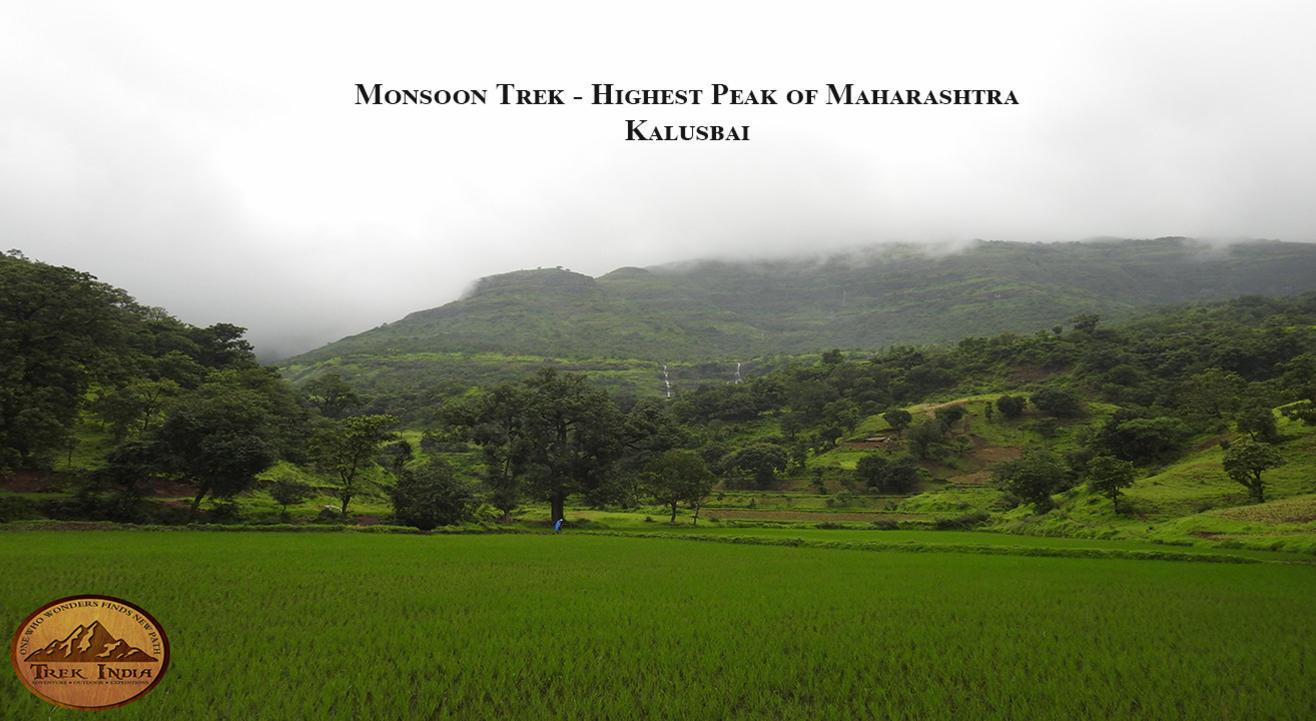 Monsoon Trek - Highest  Peak of Maharashtra Kalsubai | Trek India
