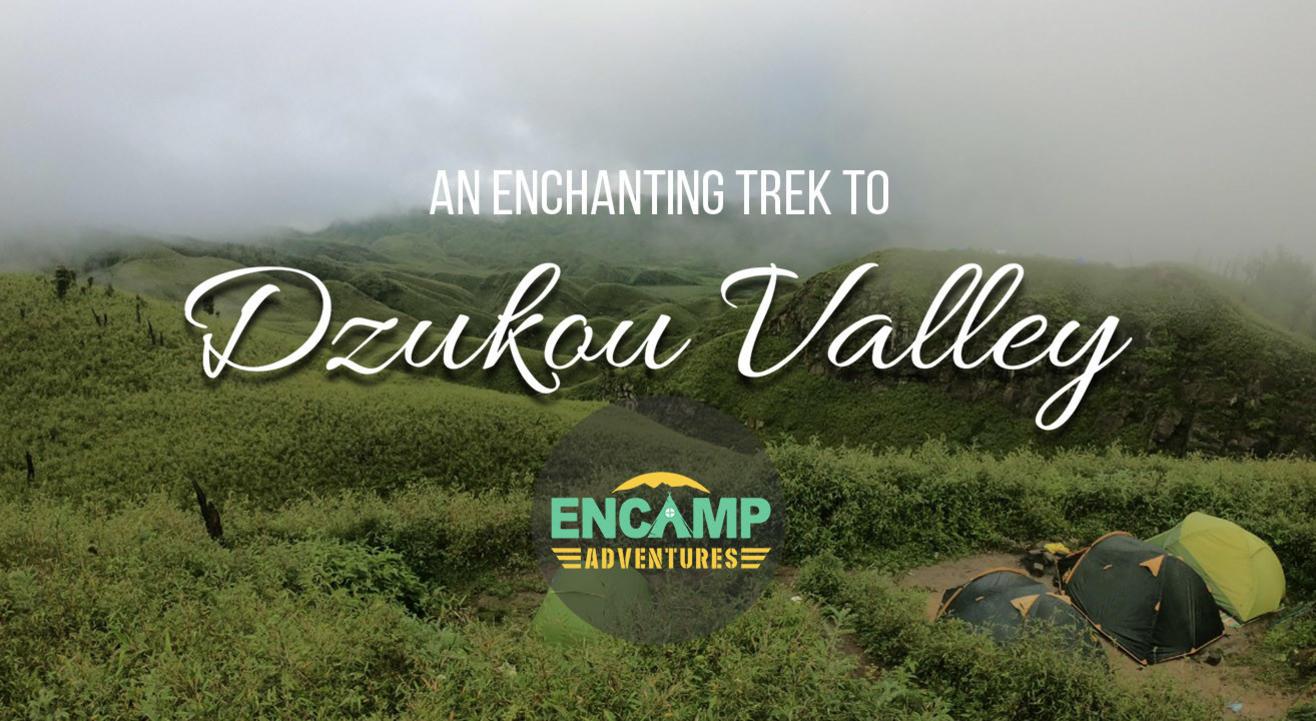 Dzukou Valley trek   Encamp Adventures