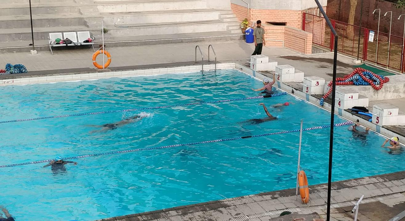 Fitso SEALs Swimming Classes Apeejay School Noida