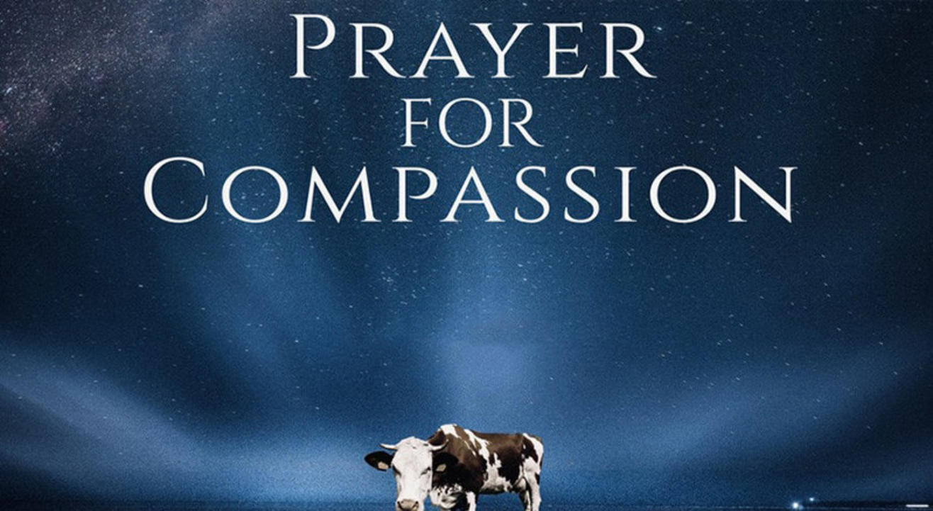 A Prayer for Compassion (Movie Screening)