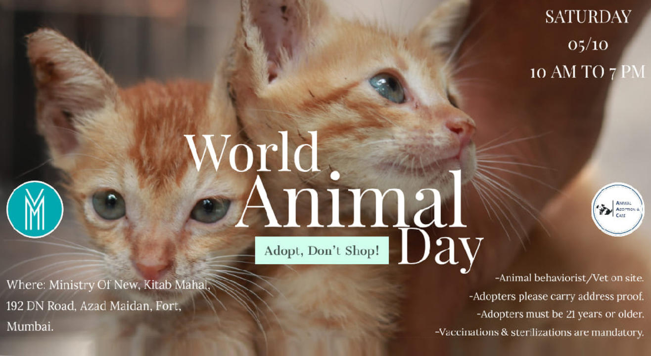 Celebrating World Animal Day