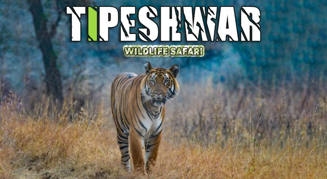 Tipeshwar Wildlife Safari | Travel Trikon