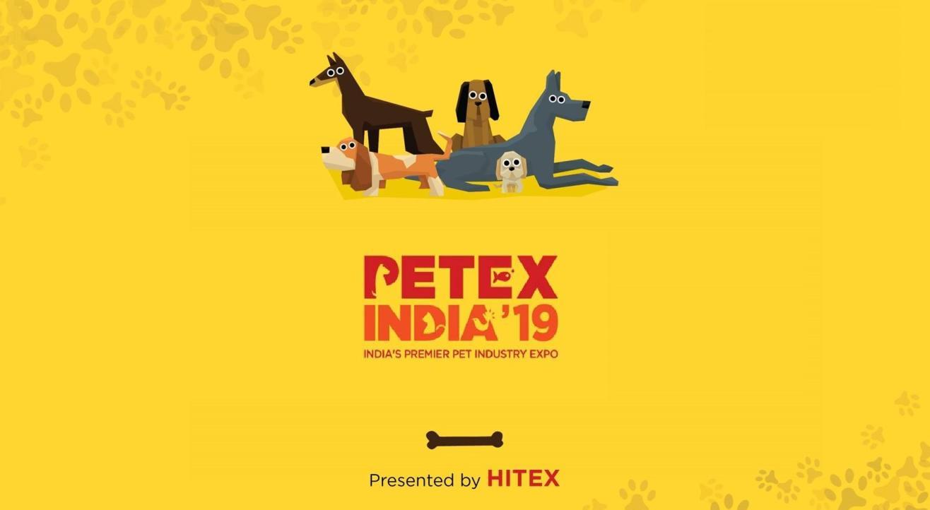 Petex India'19