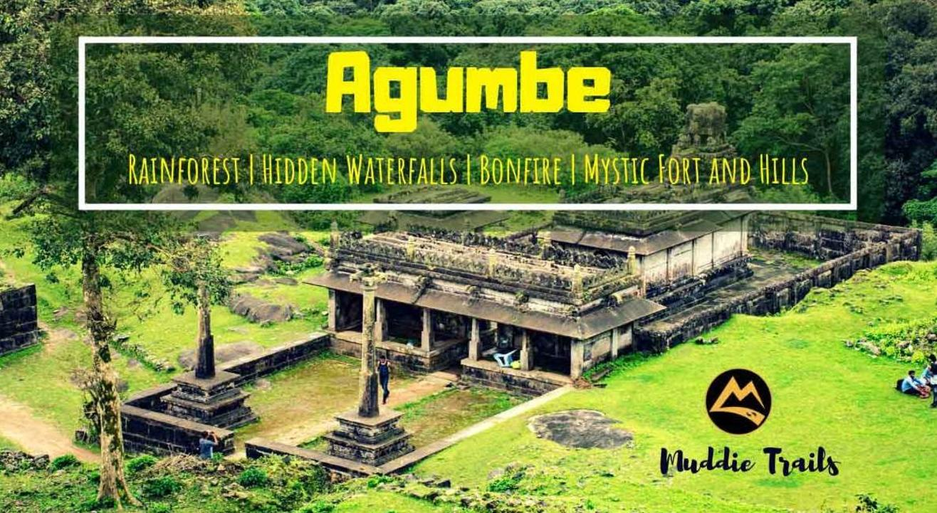 Monsoon special – The Agumbe Rainforest Experience | Muddie Trails
