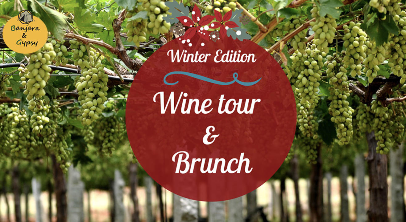 Wine Tour with Lunch