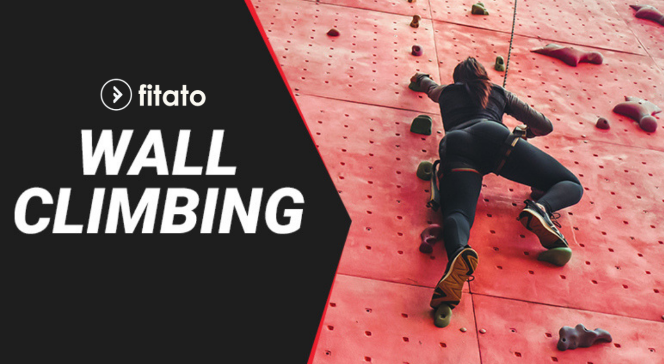 Fitato Wall Climbing Workshop