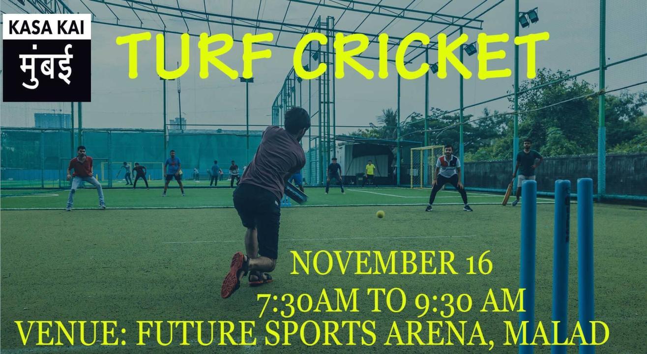 Turf Cricket At Future Sports Arena, Goregoan