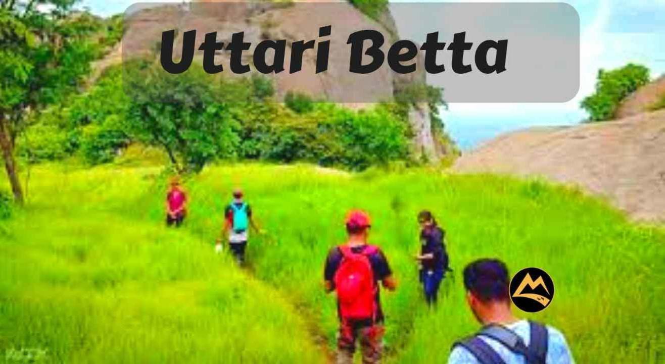 Uttari Betta Sunrise Trek   Muddie Trails
