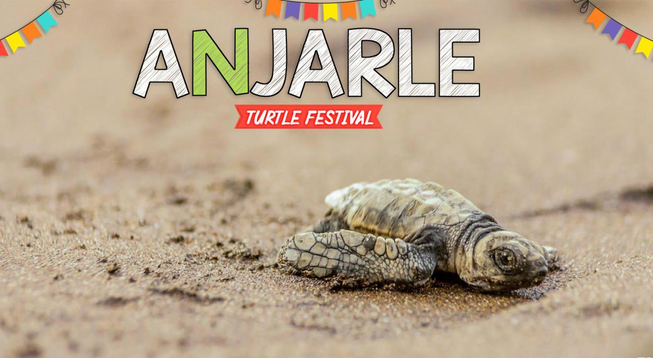 Anjarle Turtle Festival | Trikon