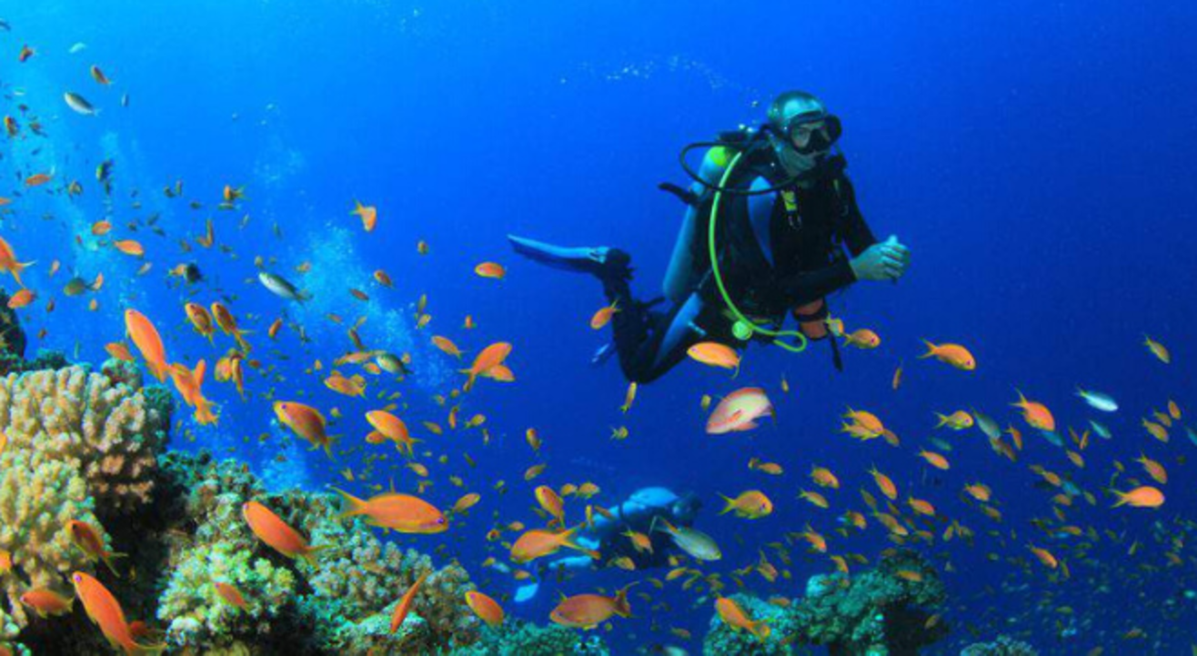 Scuba Diving at Shiroda Paradise Beach by Sea Water Sports.