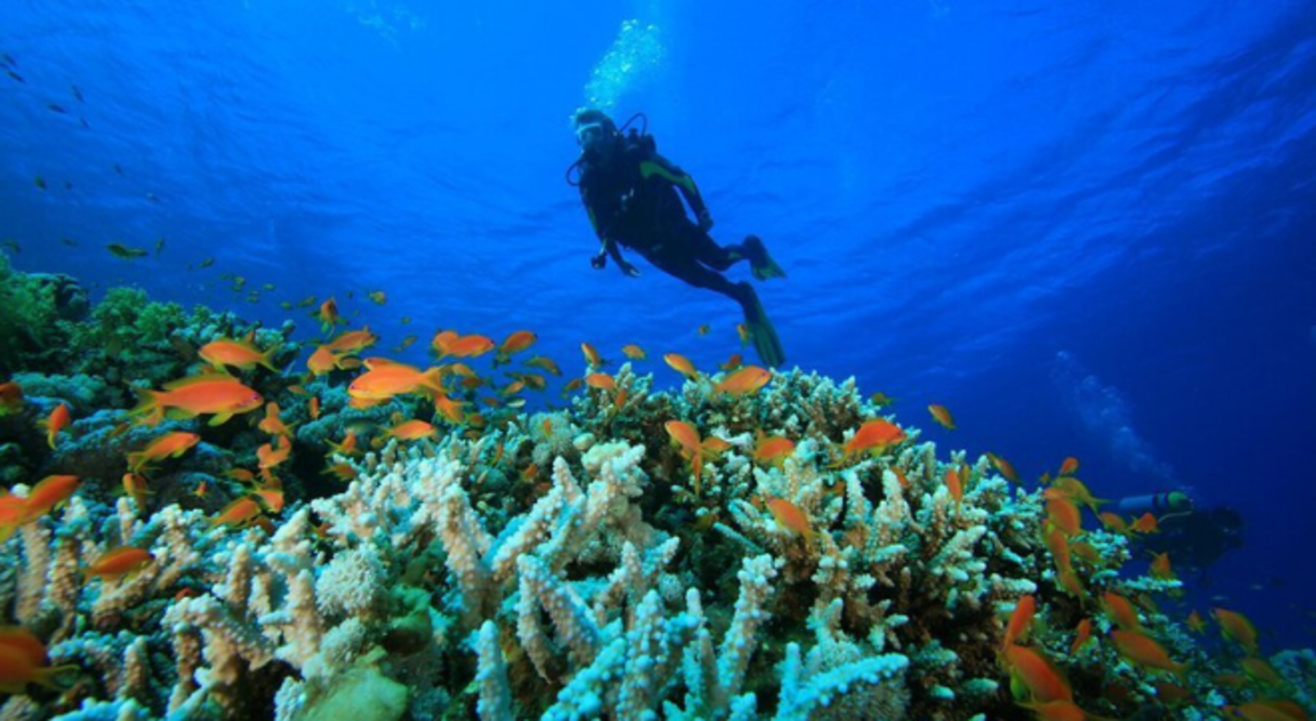 Scuba Diving & Water sports with Multiple Rides at Shiroda Paradise Beach by Sea Water Sports.