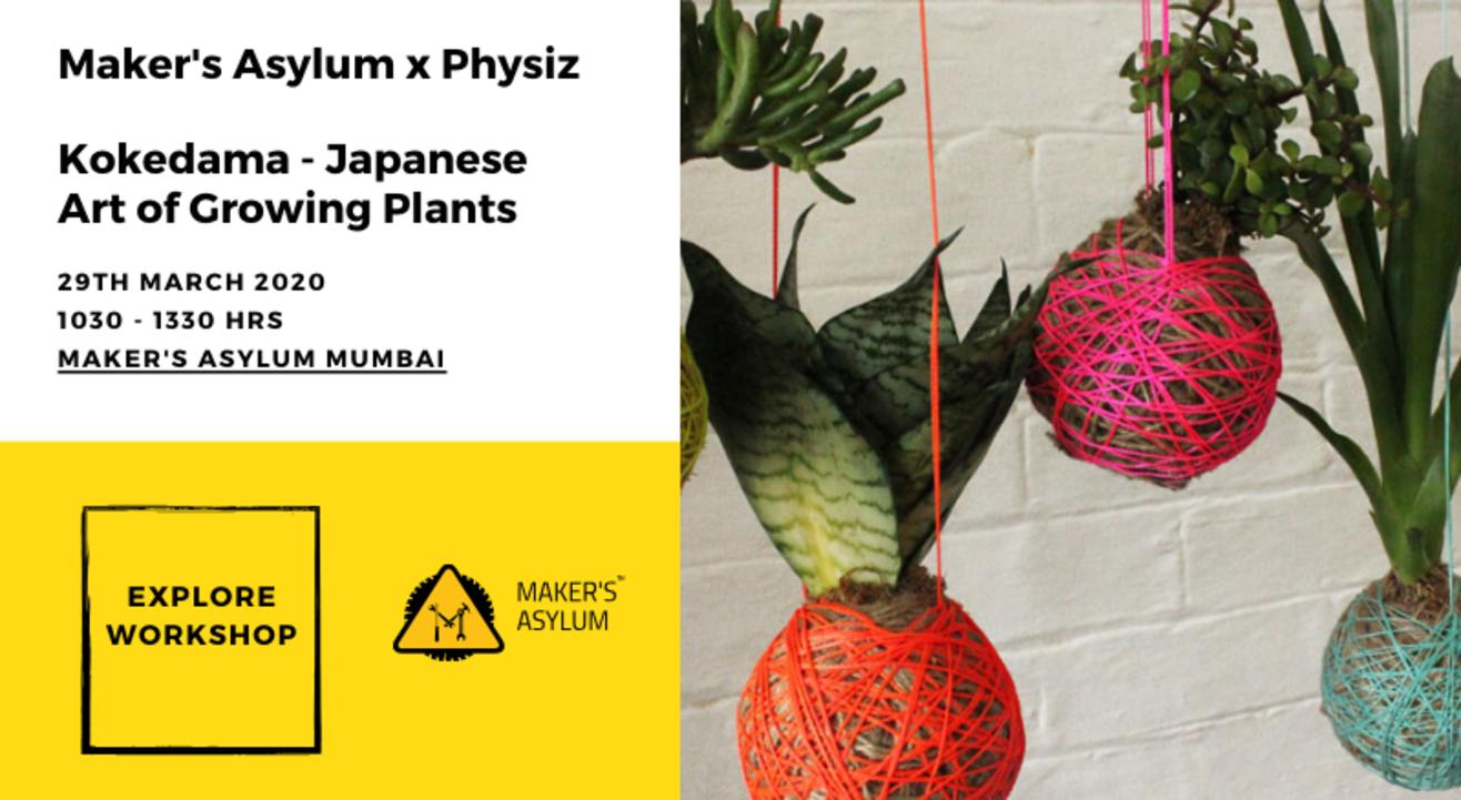 Kokedama - Japanese Art of Growing Plants