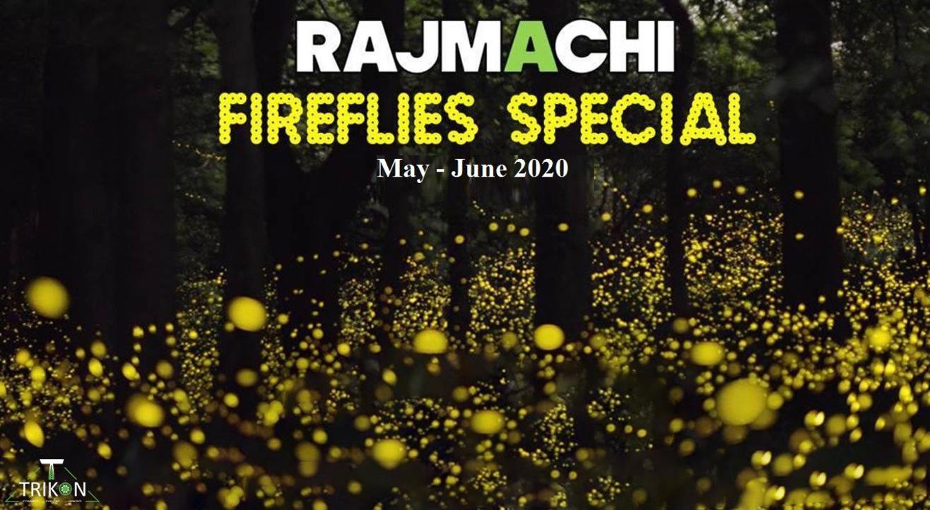 Rajmachi Fireflies Special | Trikon