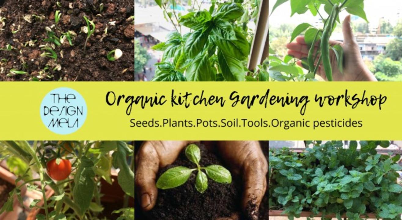 Organic Kitchen Gardening Workshop By The Design Mela